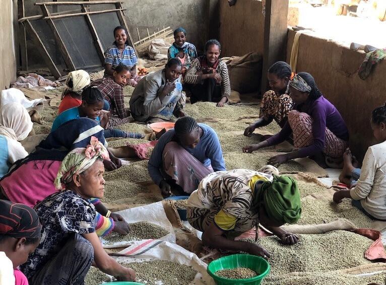 Кофе в эфиопии