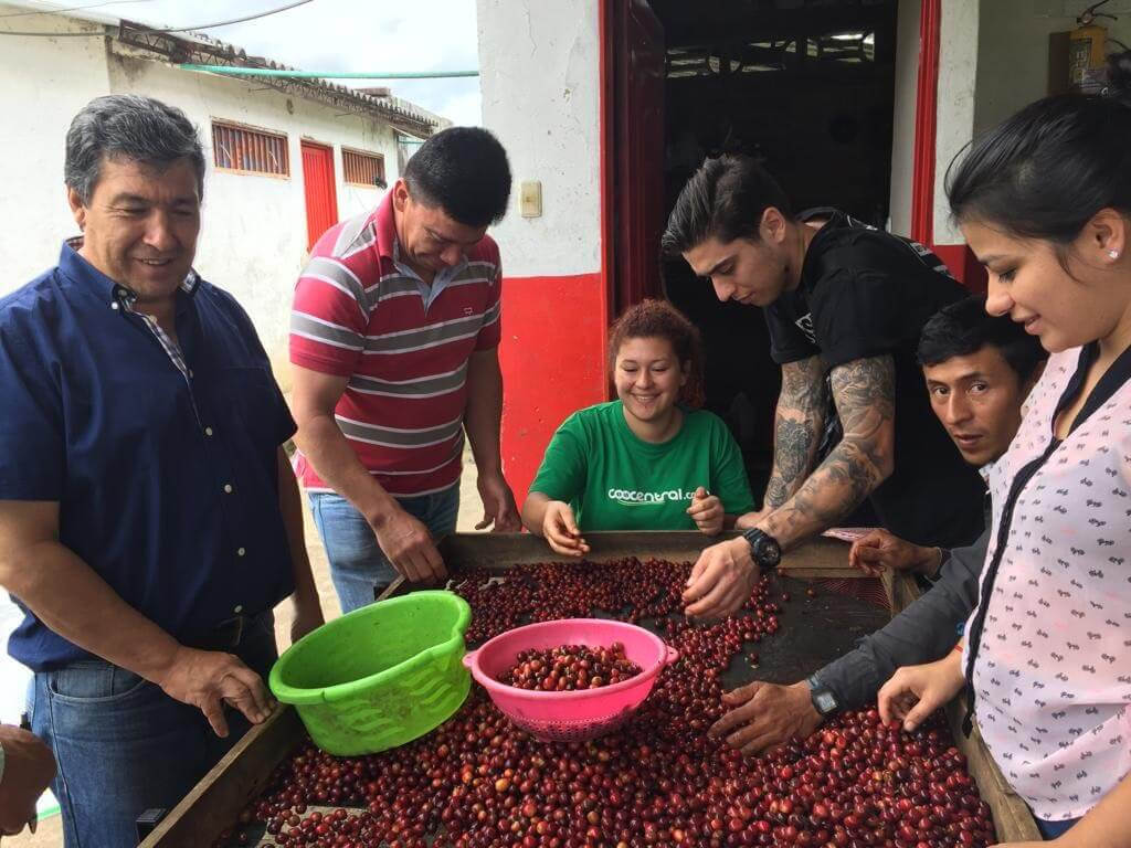 Кофе в сальвадоре